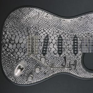 Détails de la guitare James Trussart Steel-O-Matic